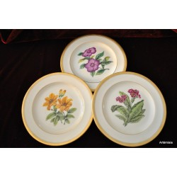 Assiettes porcelaine Haviland